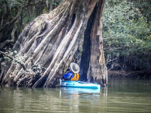 Savannah River from Stokes Bluff with LCU Nov 7, 2014, 4-18 PM Nov 8, 2014, 3-003