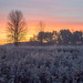 """Horicon Marsh """"frosted"""" by pjricchio"""