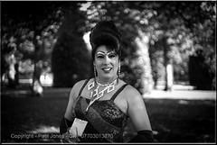 Chester Pride 2014 - Grosvenor Park