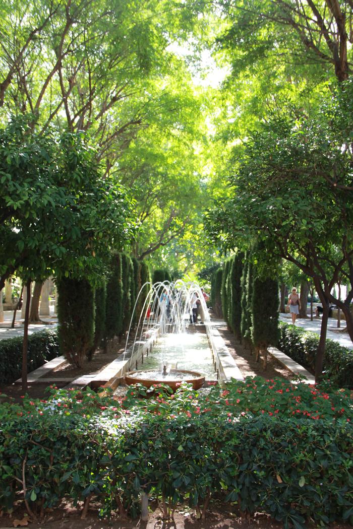 Tui_Marathon_Mallorca_2014_Palma2_15