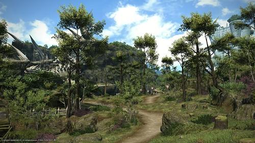 森林地帯(高地ラノシア)