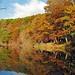Autumn colors............. by GeorgeM757