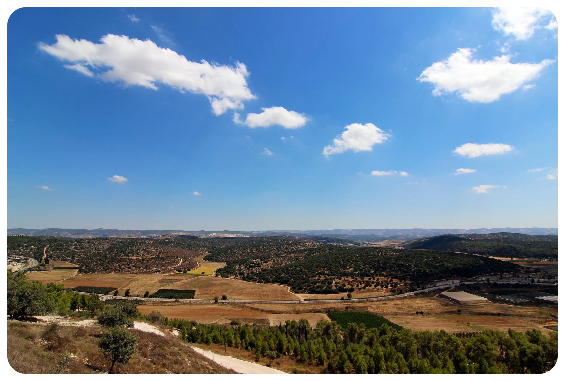 israel valley of elah