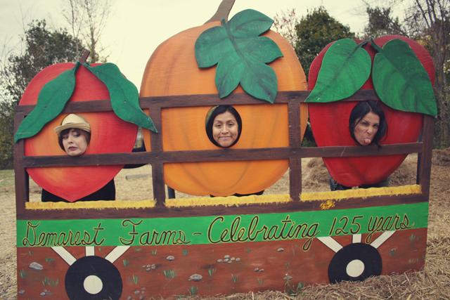pumpkin_17