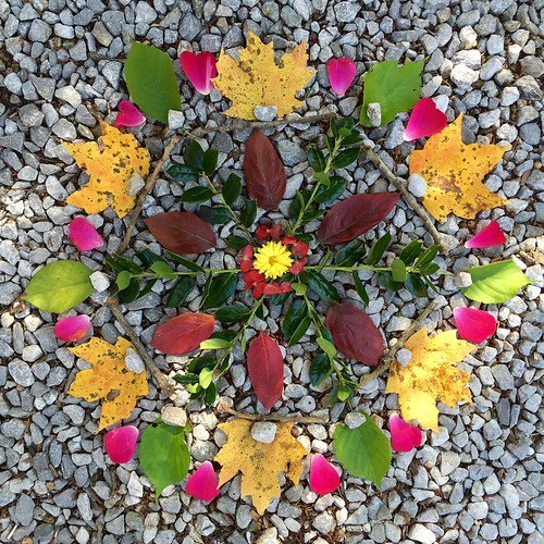 Autumn Medicine Mandala