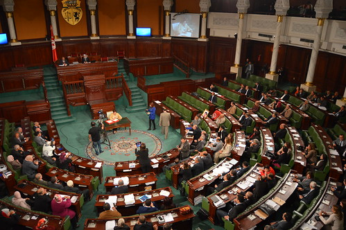 Interviews: Final Plenary Session of the National Constituent Assembly