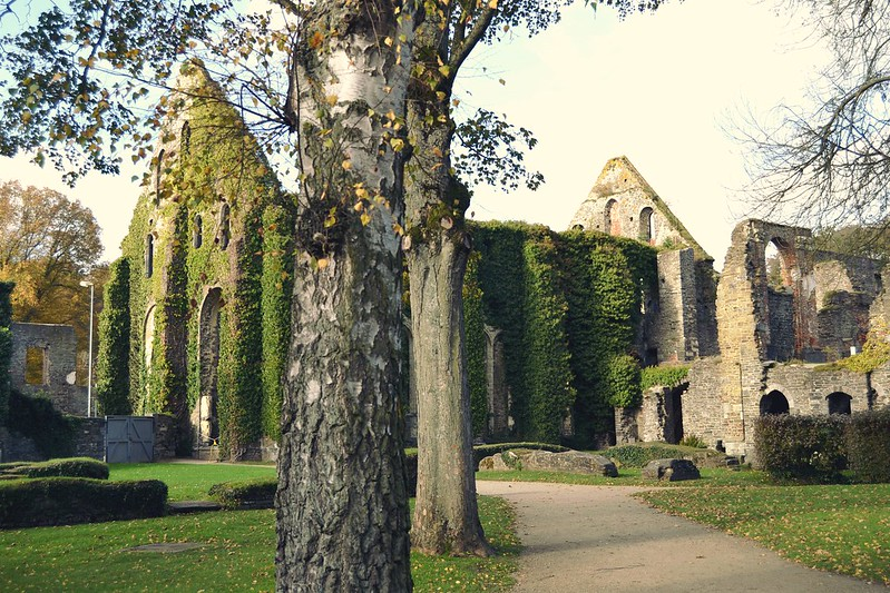 Abbaye de Villers 2