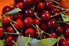 Rosso frutta
