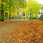 Changing seasons at Avenham, Preston -