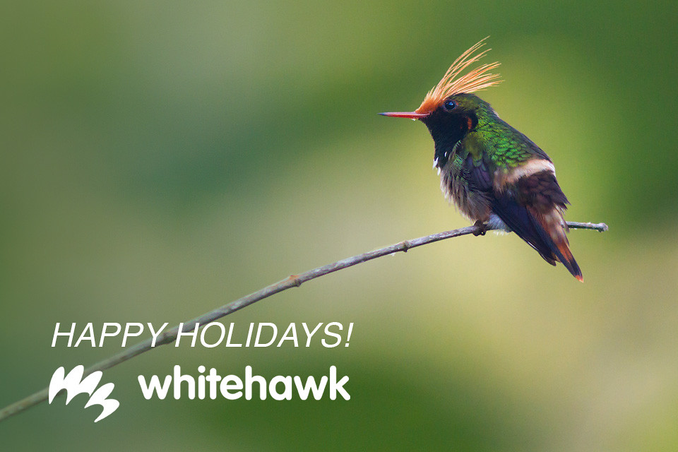 Happy Holidays from Whitehawk