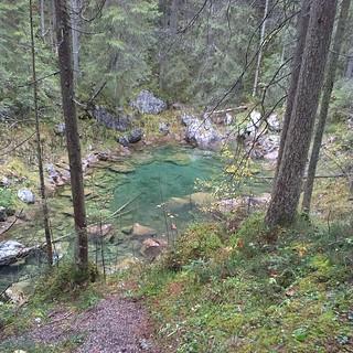 Das #drachenseelein mitten im Wald. #eibsee #Bayern #Urlaub
