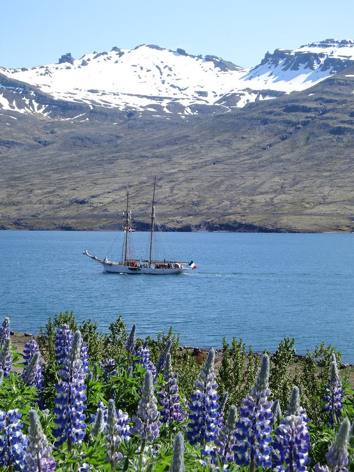 Fiordi orientali