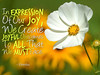 054_Expression_Of_Our_Joy_AR_50_pg58_600x480_Eleesha_Inspiration_Quote_Affirmation05