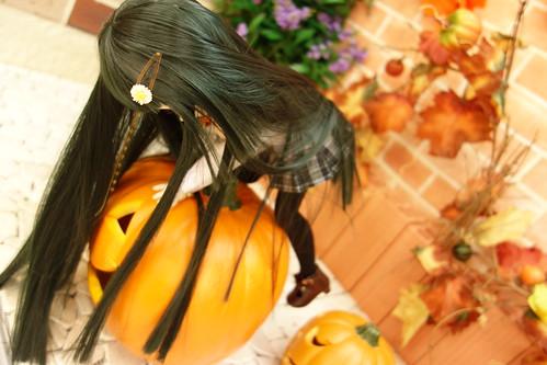 かぼちゃその3。