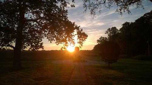 sunrise mahockney mahockneygardens