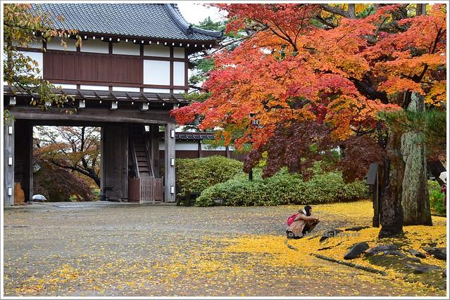 秋田千秋公園020-DSC_3593