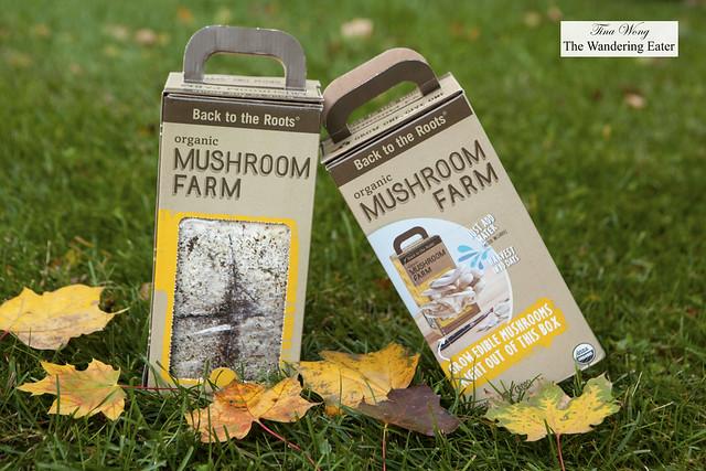 Mushroom Farm Kits