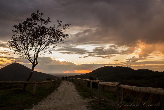 tampurio - Sunset
