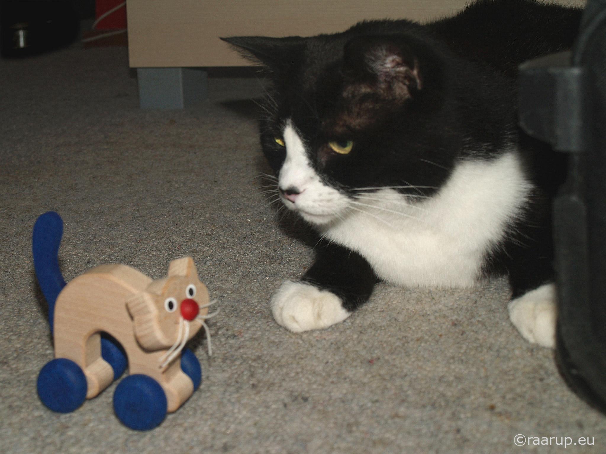 Angela Cat Toy