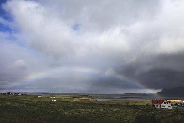 Iceland_Spiegeleule_August2014 002