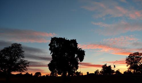 trees sunset sky clouds evening dusk kansascity missouri swopepark