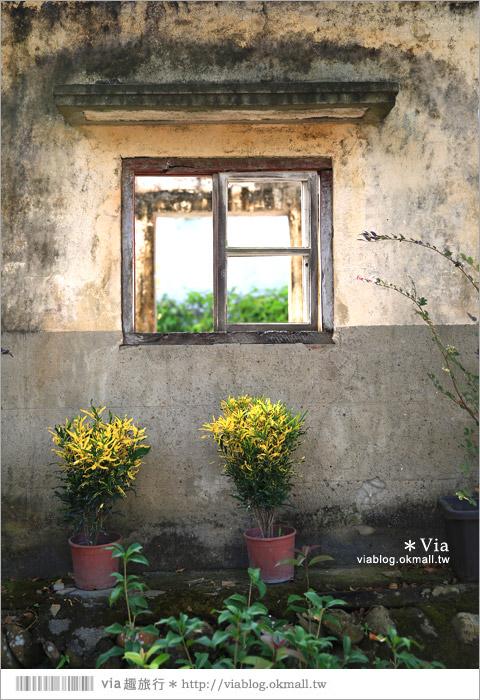 【關廟彩繪村】新光里彩繪村~在北寮老街裡散步‧遇見全台最藝術風味的彩繪村25