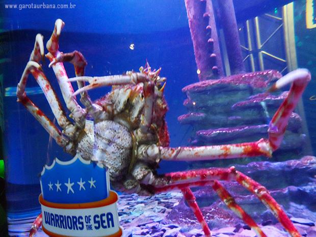 Sea Life London Aquarium 9