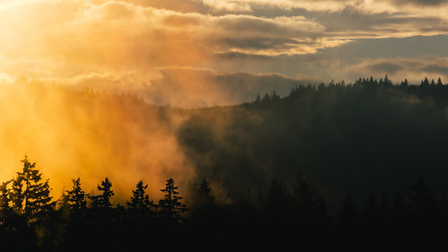 trees sunset nature fog clouds landscape scenic pacificnorthwest washingtonstate canonef100400mmf4556lisusm canoneos5dmarkiii johnwestrock