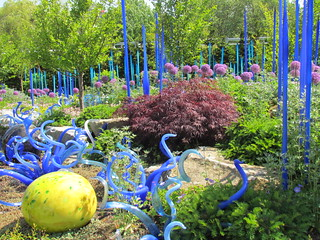 Chihuly Exhibit at Seattle Center
