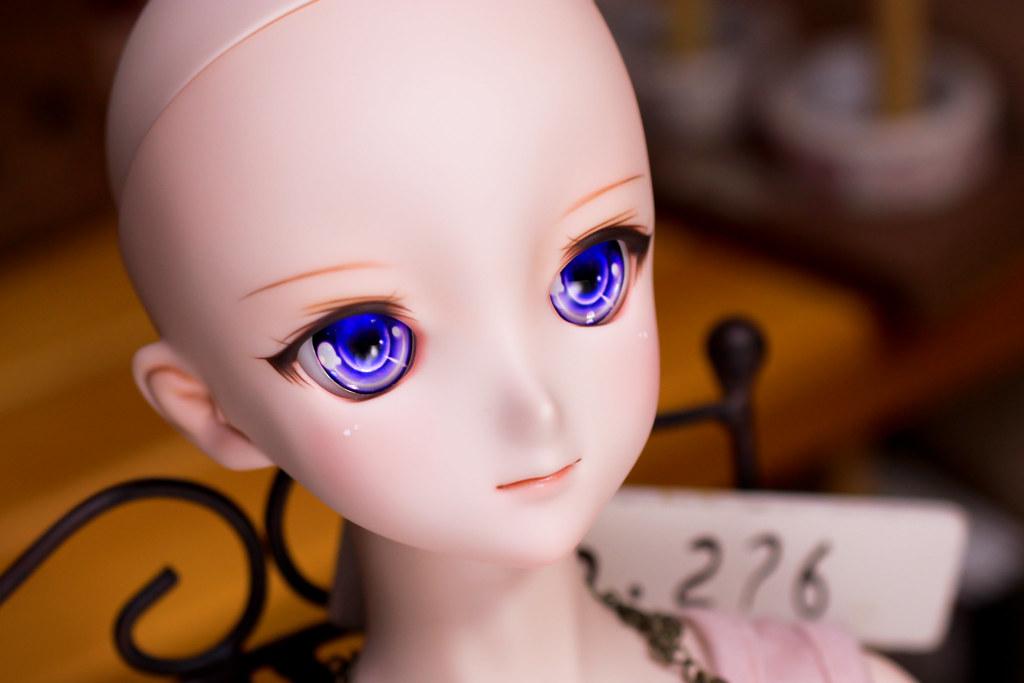 DDH-09(N)hop-head-3