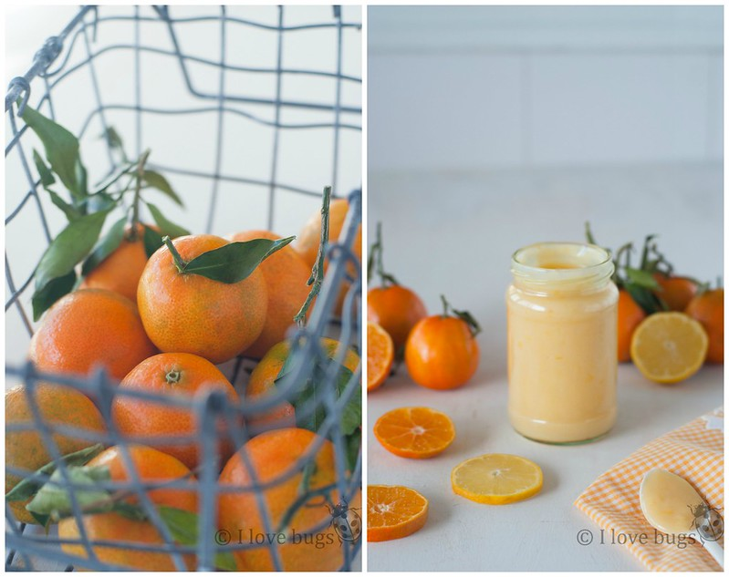 Mandarina curd 1 Collage