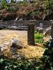 Sanctuary of Despoina at Lykosoura, Arkadia 37
