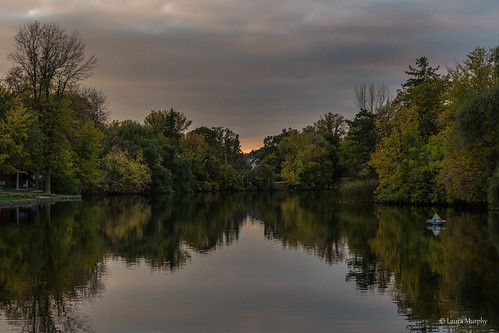 trees light sunset ontario canada water reflections evening pond shadows ottawa textures canon6d