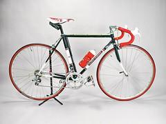 Mi fabulosa bicicleta Vintage
