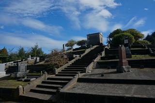 Terraced hillside cemetery in Ferndale