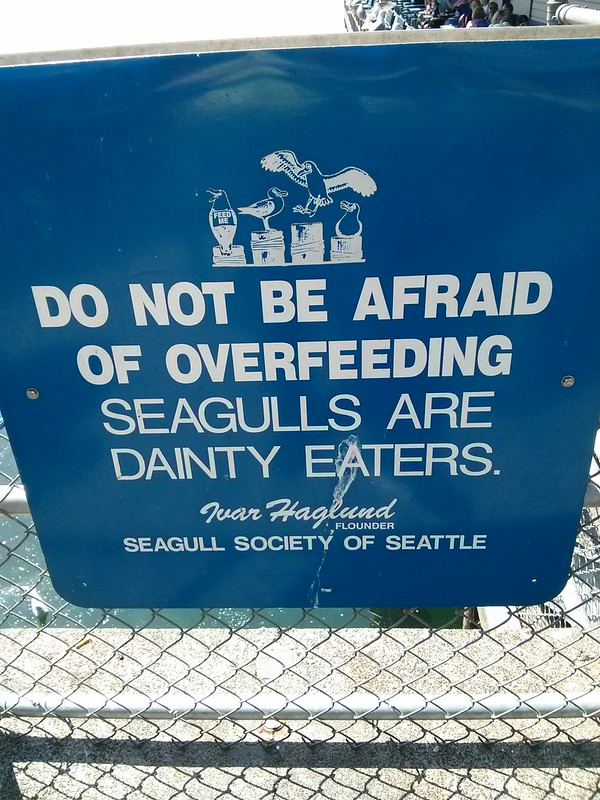 Seagulls are dainty eaters