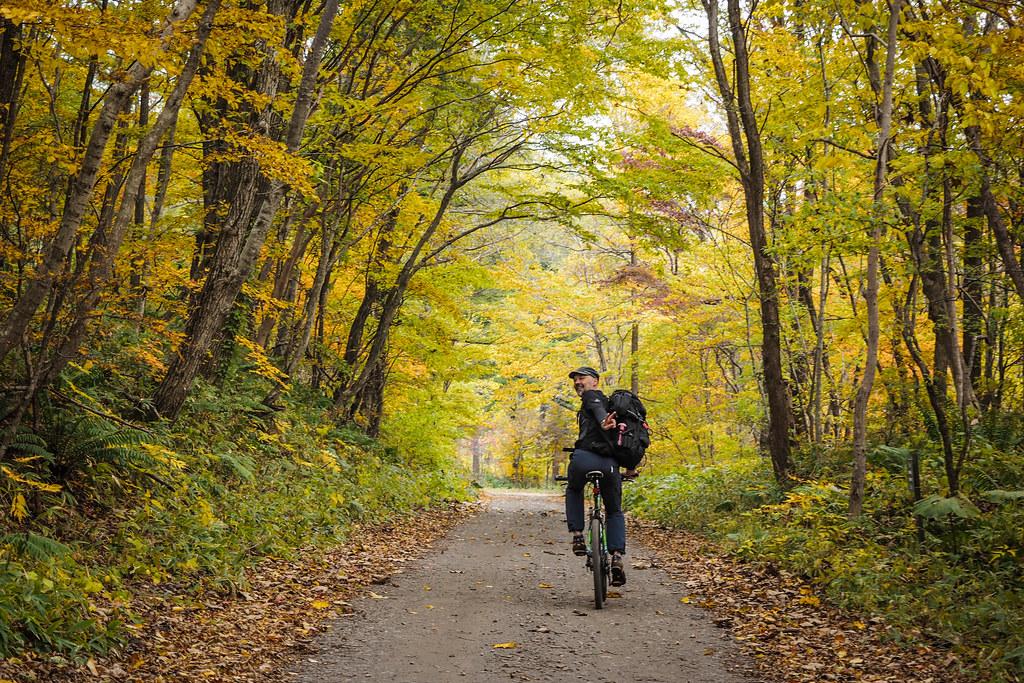Forestry roads near Lake Shikotsu, Hokkaido, Japan