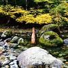 sacred spot #opalcreek #oregon