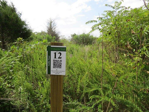 Audio stop 12 is among the two dozen posts with QR codes that tell the history of the Uwharrie National Recreation Trail. (Photo courtesy The LandTrust for Central North Carolina)