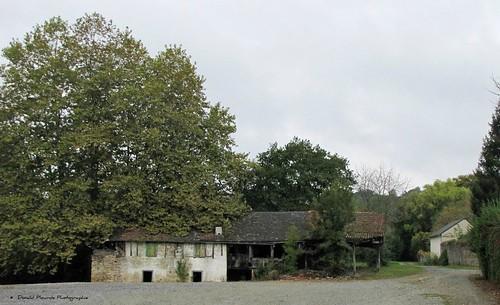 Abandonnée - Lucq de Béarn (3)