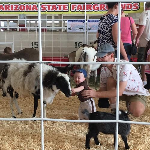 AZ State Fair 18Oct14