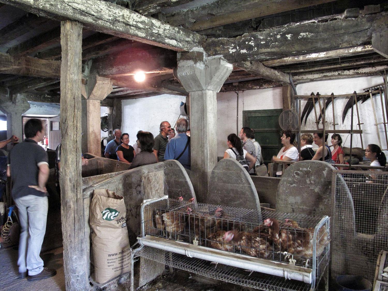 Lekoia Bekoa_ Berriatua_caserio planta baja_jornadas patrimonio europeo bizkaia
