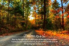 Psalms 25:4-5 nlt