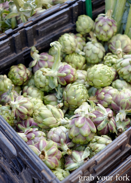 Artichokes at Abbotsford Convent Slow Food Farmers Market