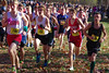 Cross country 2014-11-15 691-6x9