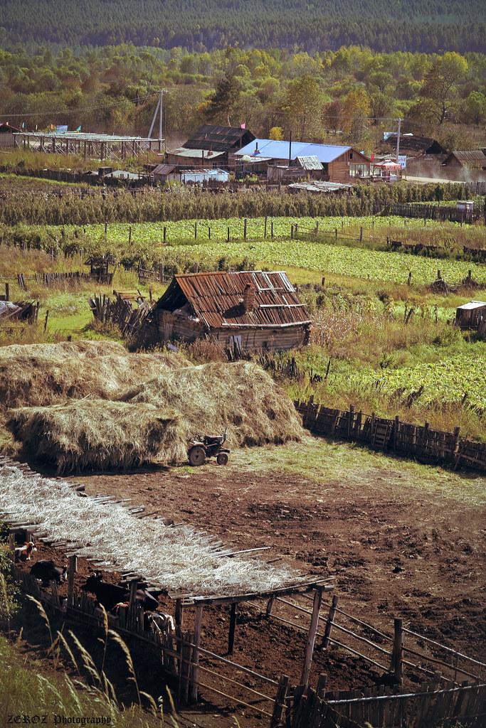 內蒙古‧印象2128-31-2.jpg