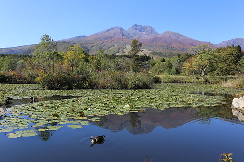 blue autumn mountain lake green pond mt newt bellied 妙高山 いもり myokosan いもり池
