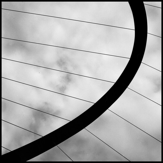 Curved Lines Photography