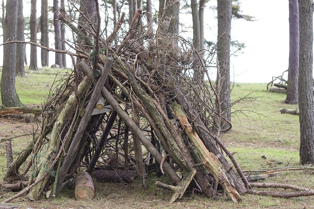 twig-branches-den-lyme-park