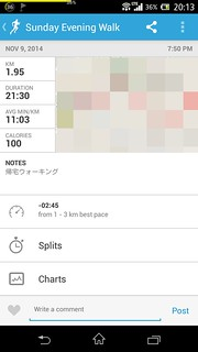 20141109_RunKeeper(Walking)
